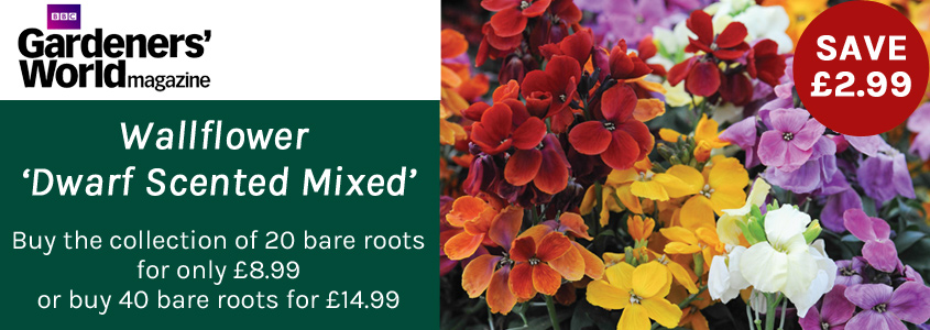 Gardener's World Special Offer
