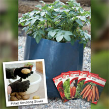 Patio Potato Kit for only £9.99!