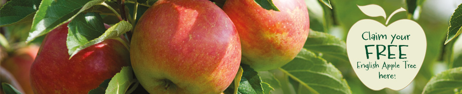 Thompson & Morgan in association with Copella - Claim your free English Apple Tree