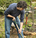 Are you a beginner gardener?