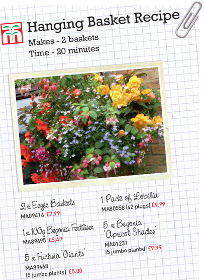 Begonia Basket Recipe