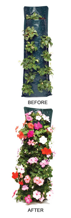 How to get the best from  your flower pouches - Before and After