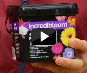 how to use incredibloom® video