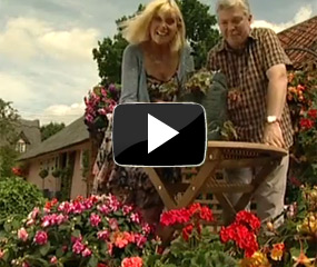 how to plant up a patio bag video