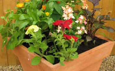patio containers designs - get the look