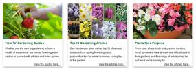 more gardening guides