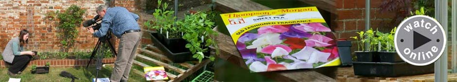 how to gardening video library