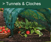 Tunnels & Cloches