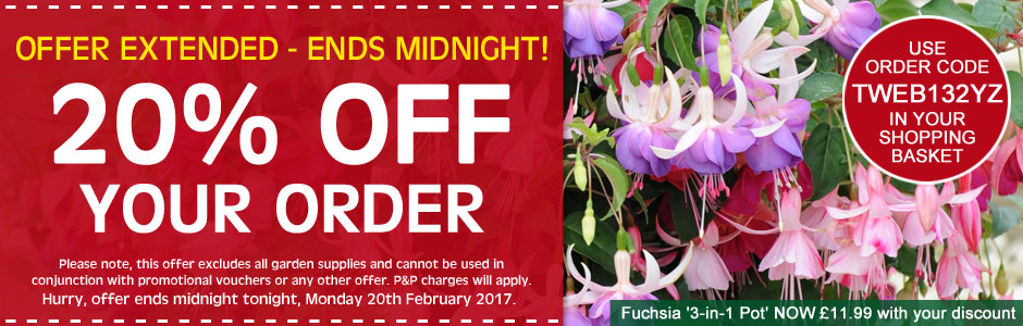 20% OFF your order ends midnight