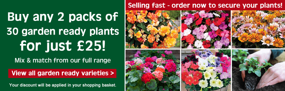 Buy 2 packs of 30 garden ready plants for just £25