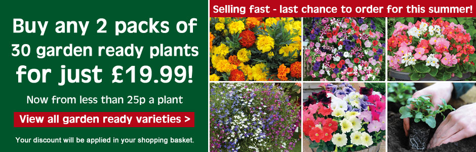 Last chance to buy your garden ready plants for this summer