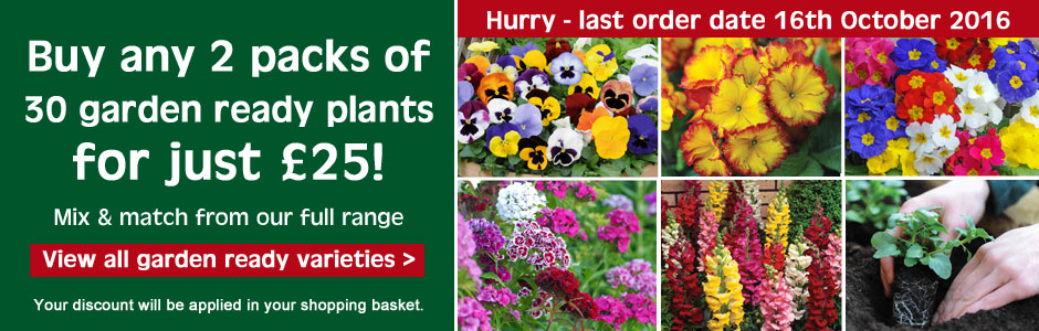 2 packs of 30 Garden Ready plants for just £25