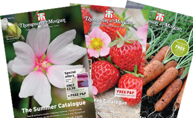 request a copy of our latest catalogue