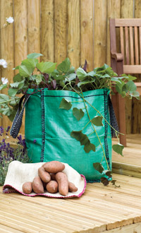 sweet potato grow bag