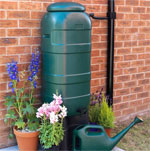 Collect valuable rainwater