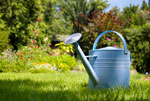Water your lawn in hot weather