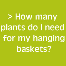 How Many Hanging Basket Plants Do I Need?