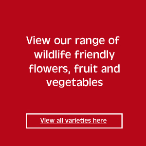 view our full range of wildlife friendly flowers