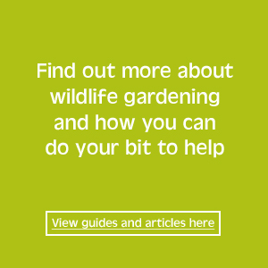 wildlife gardening guides and articles
