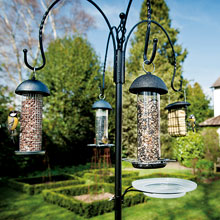 Bird Feeders, Bird Tables and Feeding Stations