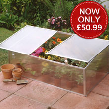 Halls 3ft x 2ft Cold Frame (Single)