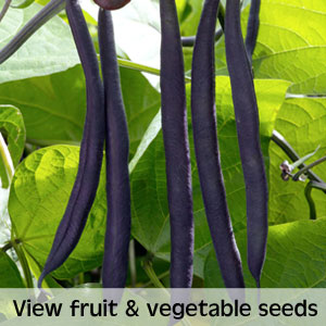 View fruit and vegetable seeds