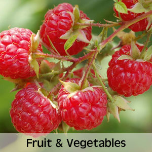 Up to 50% OFF Fruit & Vegetables