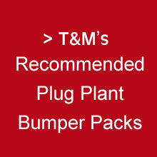 Thompson & Morgan's Recommended Plug Plants