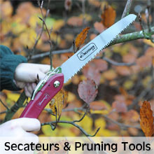 Secateurs and Pruning Tools for maintaining a hedge in tip top condition