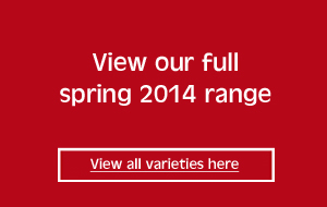 view our full spring 2015 range