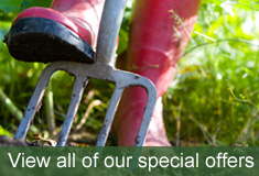 View our special offers