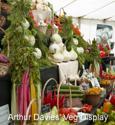 Arthur Davies' Vegetable Display