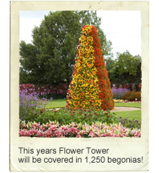 This years Flower Tower will be covered in 1,250 begonias!