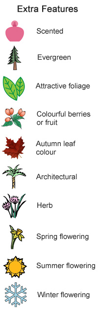 Different kinds of plants with names for Different types of soil and their uses