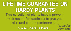 Lifetime Guarantee on Hardy Plants