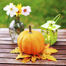 Create the perfect autumnal table decoration