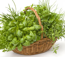 Fresh herbs work best in this delicious soup, try using basil, orgenano or chives