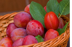 Plum Chutney Recipe