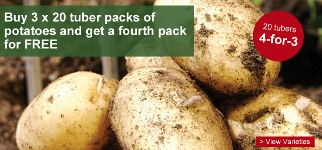4 for 3 on selected 20 tuber packs of potatoes