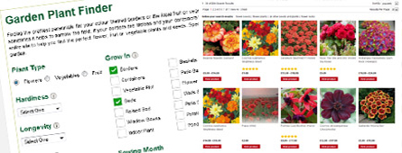 Site Helps You Find the Perfect Plant for the Garden