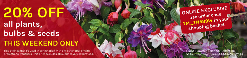 20% OFF all plants, bulbs & seeds