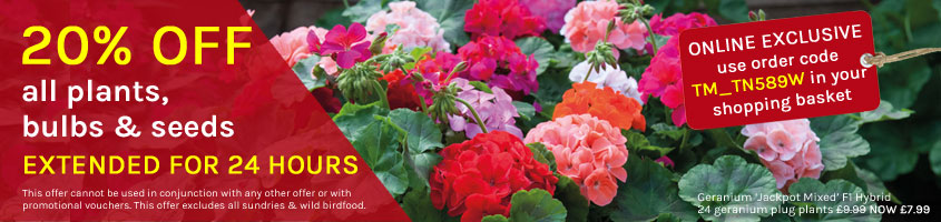 20% OFF plants, bulbs & seeds
