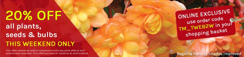 20% off all plants, seeds and bulbs