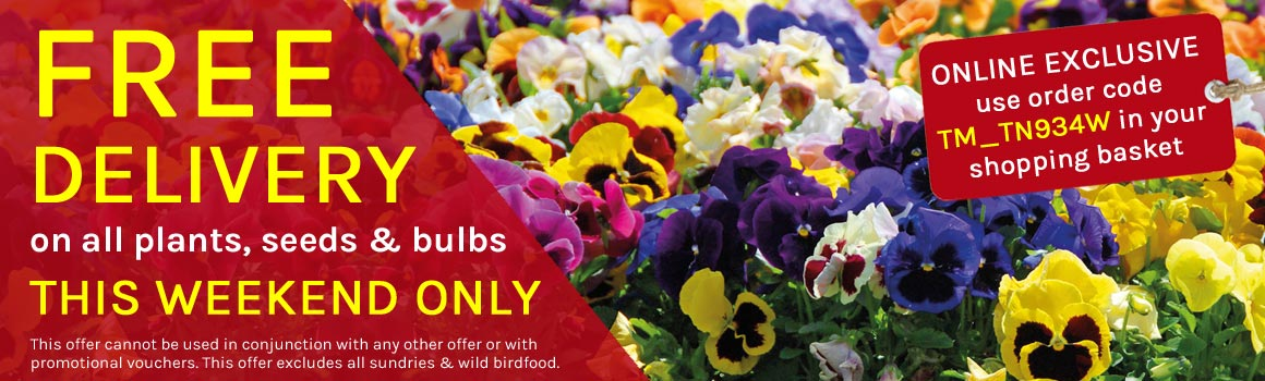 FREE Delivery on all plants, bulbs & seeds - ends midnight Monday!