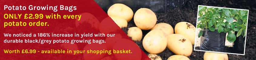 Potato Growing Bags ONLY £2.99 with every potato order