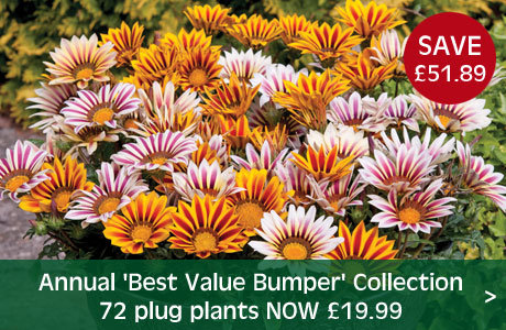 Annual 'Best Value Bumper' Collection now £19.99