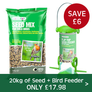 Bird Seed and Feeder Offer