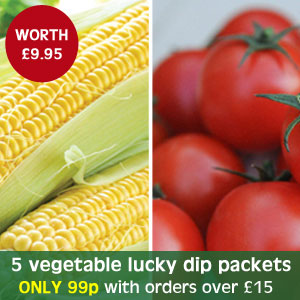 5 vegetable lucky dip packets - only 99p with orders over £15