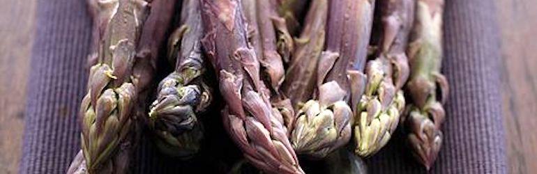 Asparagus 'Burgundine' from Thompson & Morgan