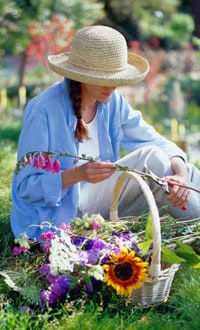 cutting flowers